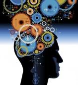 Bisnis-Tanpa-Modal-otak